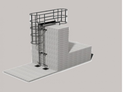 Ascent Fixed Access Ladders